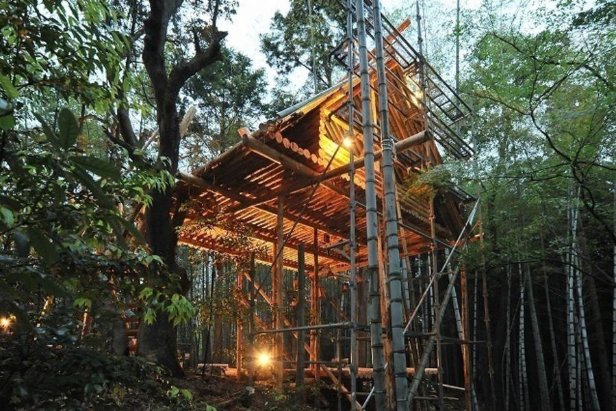 思い出のツリーハウス